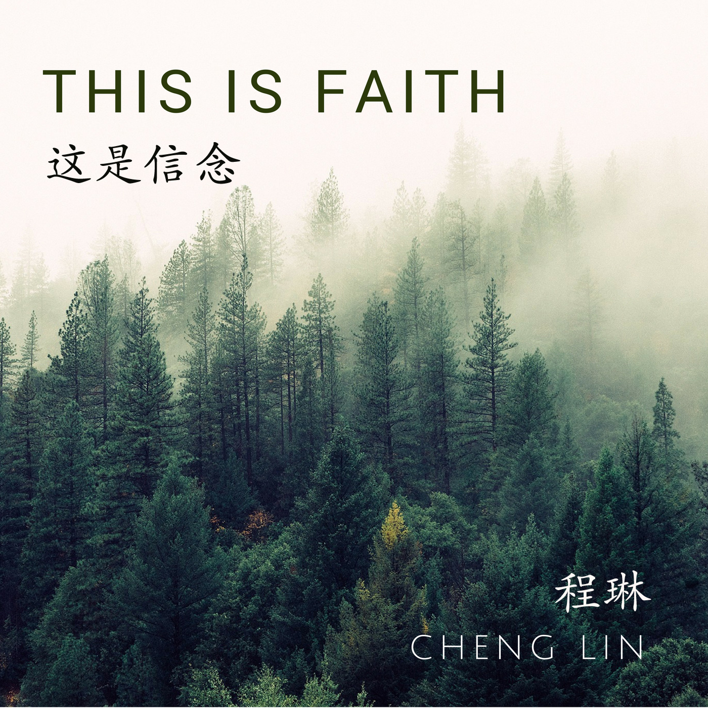 This is Faith Chinese cover