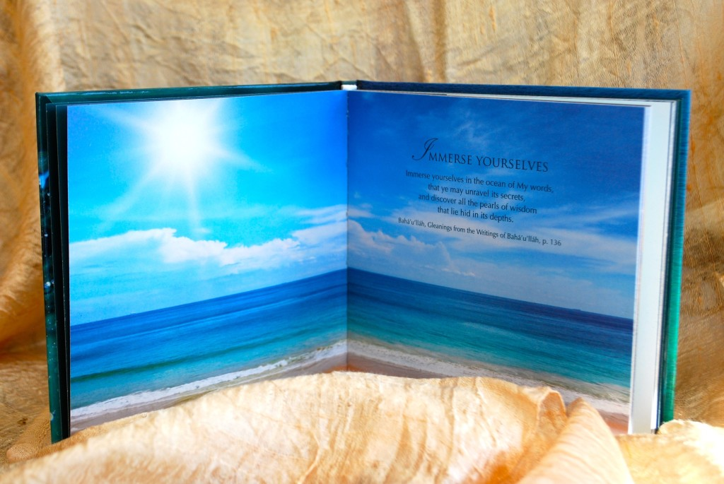 Immerse Yourselves book