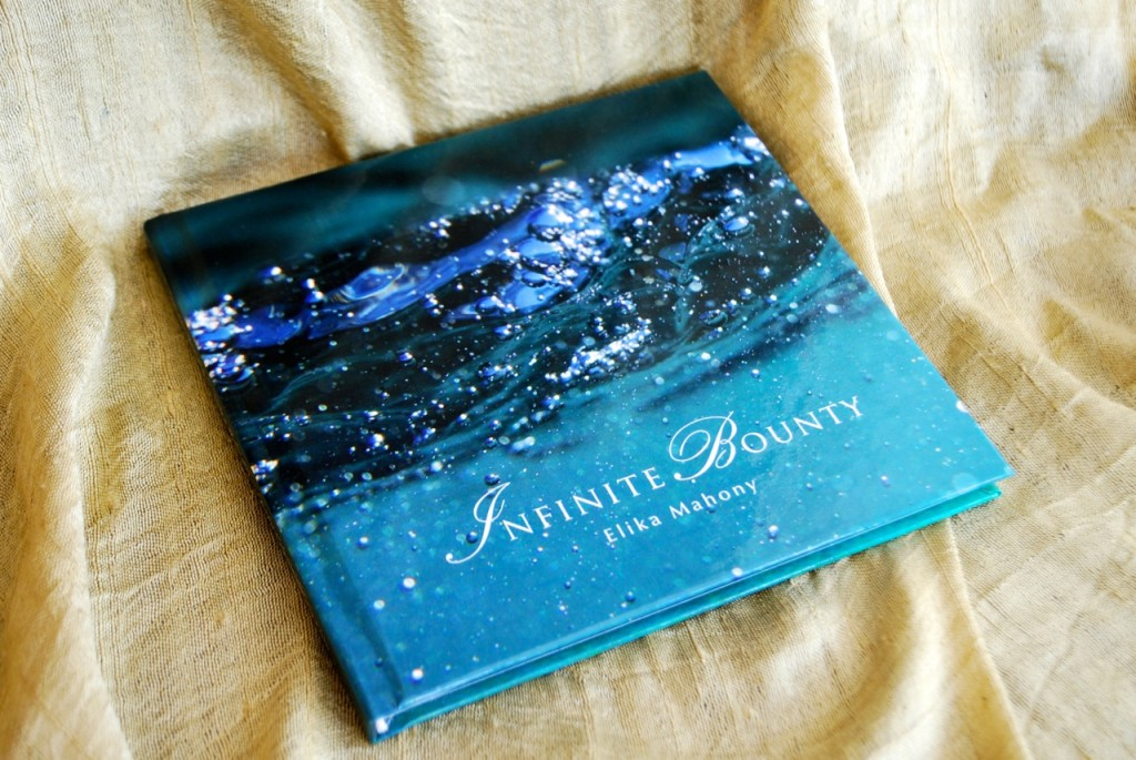 The mock-up booklet: 'Infinite Bounty'